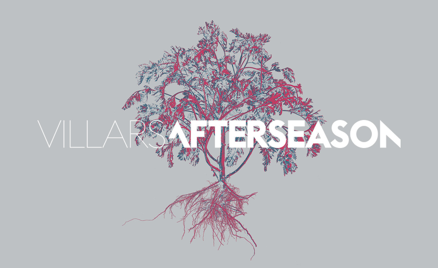 Afterseason Festival